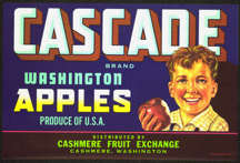 #ZLCA*046 - Cascade Apples Crate Label