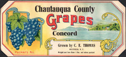 #ZLSG101 - Early Chautauqua County Concord Grapes Crate Label