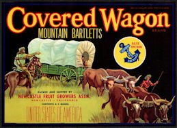 #ZLC446 - Covered Wagon Mountain Bartletts Pear Crate Label