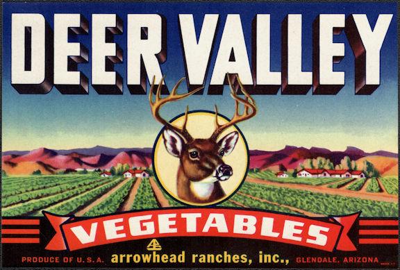 ZLSH405 - Group of 12 Deer Valley Vegetables Crate Labels - Nice Deer Image