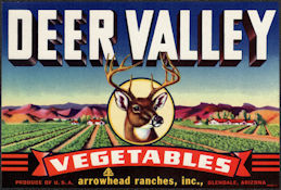 ZLSH405 - Group of 12 Deer Valley Vegetables Crate Labels - Nice Deer Image