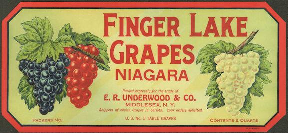 #ZLSG106 - Finger Lake Niagara Grape Crate Label - Middlesex, New York
