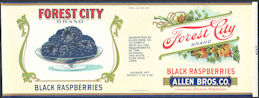 #ZLCA302 - Forest City Brand Black Raspberries Can Label - Omaha, Nebraska