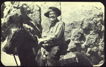 #CH289 - Gabby Hayes on Horse Postcard