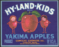 #ZLCA*045 - Half Bushel Size Hy-Land-Kids Apple Crate Label