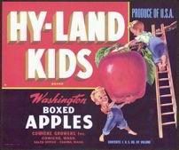 #ZLC185 - Hy-Land Kids Washington Apple Crate Label - Red Version
