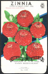 #CE044 - Cupid Scarlet (Tiny Tim) Zinnia Lone Star 10¢ Seed Pack - As Low As 50¢ each