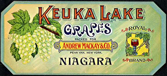 #ZLSG094 - Early Keuka Lake Grapes Crate Label