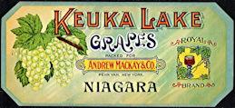 #ZLSG094 - Early Keuka Lake Grapes Crate Label