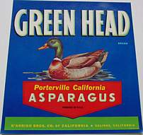 #ZLC043 - Scarce Green Head Asparagus Crate Label