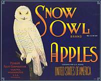 #ZLC048 - Snow Owl Apple Crate Label - Blue Version