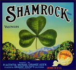 #ZLC069 - Sunkist Shamrock Valencias Orange Crate Label