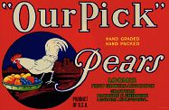 #ZLC105 - Our Pick Pear Label