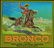 #ZLC118 - Bronco Orange Crate Label