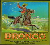 #ZLC118 - Bronco Orange Crate Label