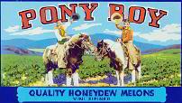 #ZLC*050 - Pony Boy Honeydew Melon Crate Label