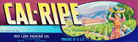#ZLSG022 - Cal-Ripe Grape Crate Label