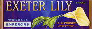 #ZLSG028 - Exeter Lily Grape Crate Label