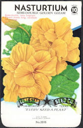 #CE019 - Semi-Double Golden Gleam Lone Star 10¢ Seed Pack - As Low As 50¢ each