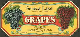 #ZLSG107 - Seneca Lake Grape Crate Label - Himrod, New York