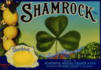 #ZLC169 - Shamrock Sunkist Lemon Crate Label