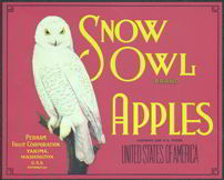 #ZLC186 - Scarce Red Background Snow Owl Apples Label