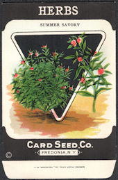 #CE161 - Summer Savory Herbs Card Seed Packet