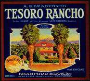 #ZLC151 - Scarce Tesoro Rancho Sunkist Orange Label