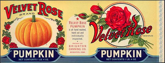 """#ZLCA076 - 11"""" Wide Velvet Rose Pumpkin Can Label"""