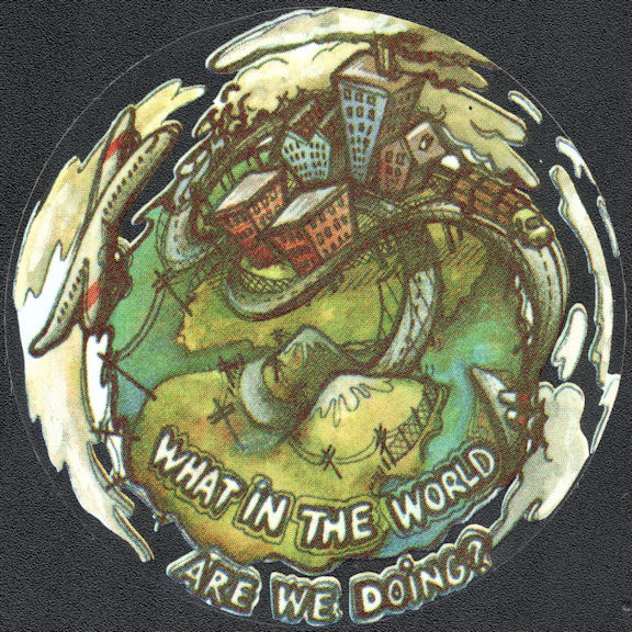 """##MUSICBP2043 - Grateful Dead Car Window Tour Sticker/Decal - Says """"What in the World are we Doing?"""""""