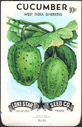 #CE057.1 - West India Gherkins Cucumber Lone Star 10¢ Seed Pack - As Low As 50¢ each