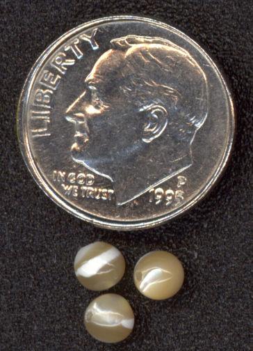 #BEADS0342 - Small shiny tan translucent bead with white Splash
